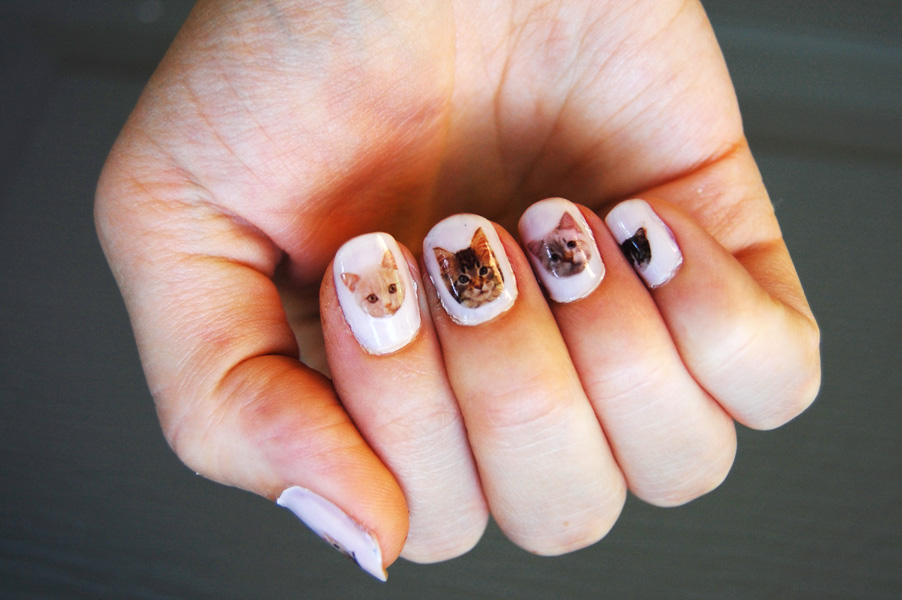 Diy cat nail decals diy in pdx prinsesfo Image collections