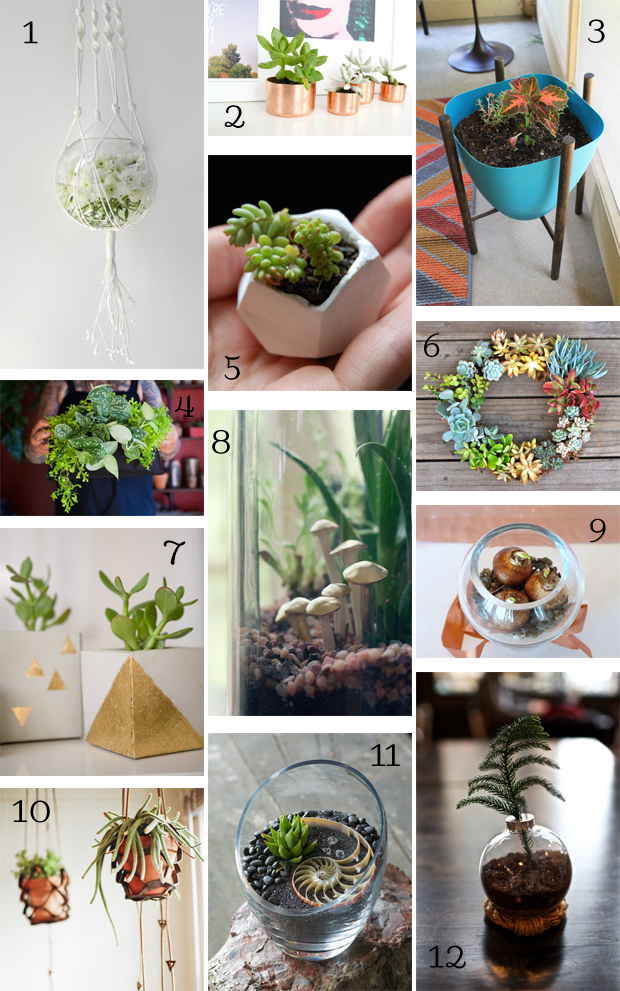 Diy Gift Guide For The Plant Lover Diy In Pdx