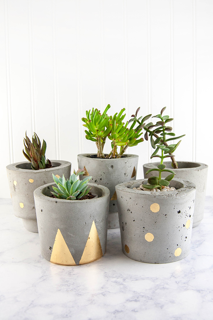 Make concrete and gold diy plant pots Concrete planters