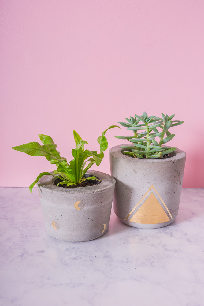 New Concrete And Gold Plant Pot Designs Diy In Pdx
